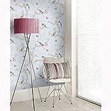 Bleu Phoebe Oiseaux papier peint le monde du papier peint 50140