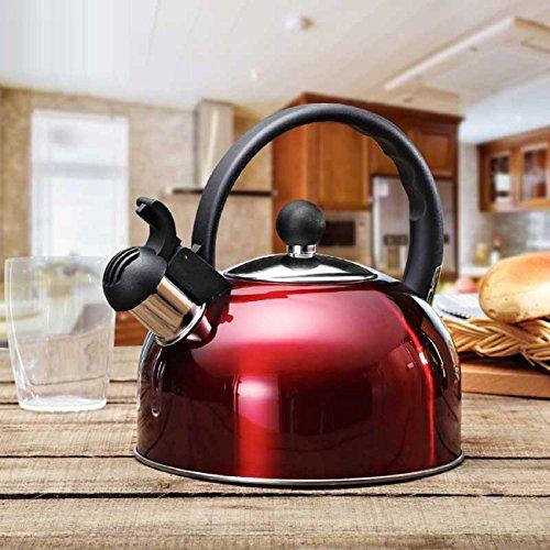 GAOJIAN Acier Inoxydable 2.5L Bouilloire À Induction Cuiseur Camping Bouilloires Cuisinière Sifflement Eau Gaz Théière Outils de Cuisine Cuisine , d