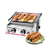 ITOP Household Commercial Stainless Steel Gas BBQ Grill Two Burners Outdoor Barbecue Glass Shield Household Adjustable Height (Silver)