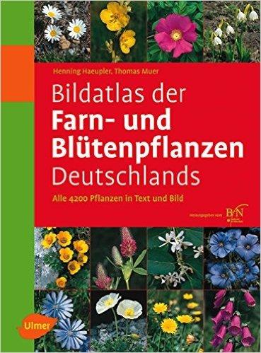 Bildatlas der Farn- und Blütenpflanzen Deutschlands von Henning Haeupler ( 17. April 2007 )