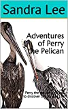 Adventures of Perry the Pelican: Perry the pelican sets out to discover beauty and fun (English Edition)
