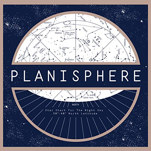 Planisphere (Picture Disc)