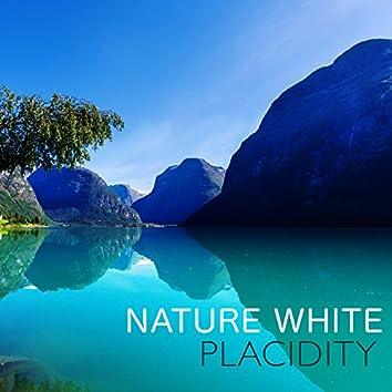 Nature White: Placidity