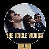 Icicle Works,the: 5 Albums Box Set (Audio CD (Box Set))