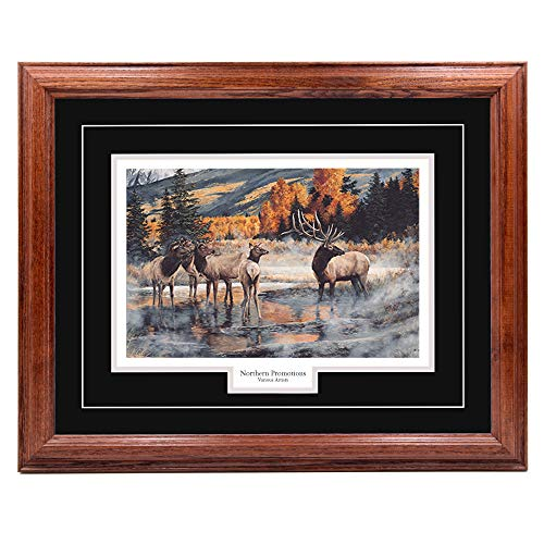 NothernPromotionsLLC Bull Elk Herd Wall Art Decoration, Hardwood Picture Frame - Wildlife Print Painting Decor - Dark Oak Frame, Black Mat, Ready to Hang - Out of The Mist Andrew Kiss 20x25