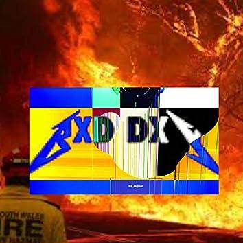 BXD DXY