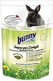 Bunny Conejo SUEÑO Oral, 1.5 kg, Negro
