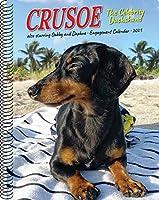 Crusoe the Celebrity Dachshund 2021 Calendar