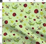 Käfer, Grashüpfer, Insekt, Marienkäfer, Frisch, Streifen