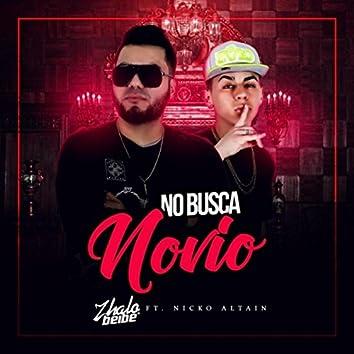 No Busca Novio (feat. Nicko Altain)