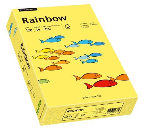 Schneidersöhne 88042348, Multi-Purpose Paper Rainbow, Fogli Colorati A4, 120 g/m2, 250 Fogli, Colore: Giallo