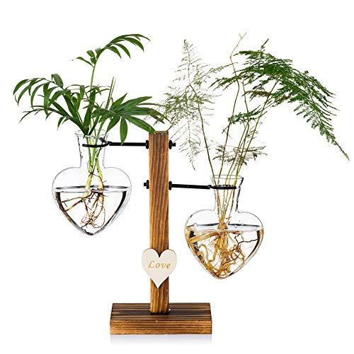 Glasseam Terrario De Vidrio para Plantas con Soporte De Madera, Jarrones Hidropónicos De Vidrio De Doble Corazón Creativo, Estación De Propagación para Plantas Modernas