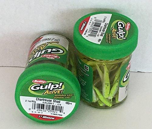 Gulp! Alive! Gulp Bait 1 INCH Chartreuse SHAD Minnow 2 jar Bundle...