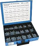 Dresselhaus 8530 - Estuche con tornillos surtidos (galvanizados y autoperforantes)