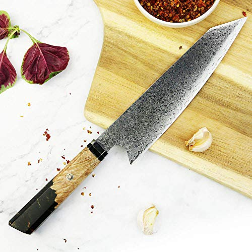 Damascus 67 Black Sapphire Resin Professional 8 Inch Chef Kitchen Knife 67 Layers of Damascus Steel & Sheath Included