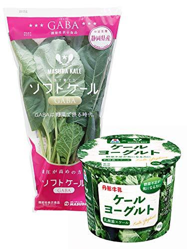 マスダケール ケールヨーグルト(N1乳酸菌) 8個 + ソフトケールGABA 5袋(サラダ・調理用ケール)【冷蔵】
