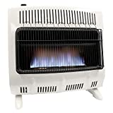 30,000-BTU Propane Heater for Indoor Use (Blue Flame)