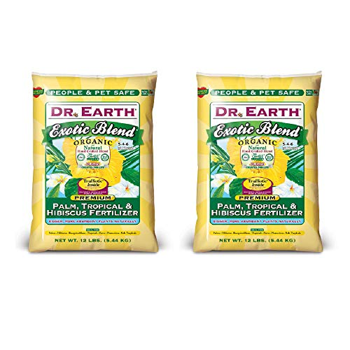 Exotic Blend Palm by Dr. Earth