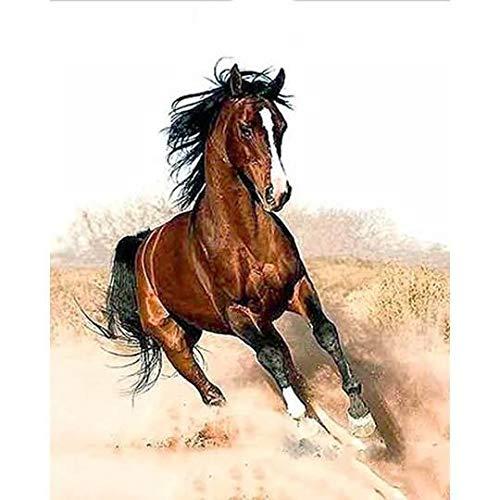 Kit de pintura al óleo por número para niños y adultos principiantes, 40,6 x 50,8 cm, diseño de caballo corriente, dibujo con pinceles, decoración de Navidad (sin marco)
