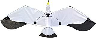 XGao Large 3D Dragon Kite - Easy to Assemble, Launch, Fly - Premium Quality with 100m Line, Great for Beach Use - Best Kites for Everyone - Girls, Boys, Kids, Adults, Beginners