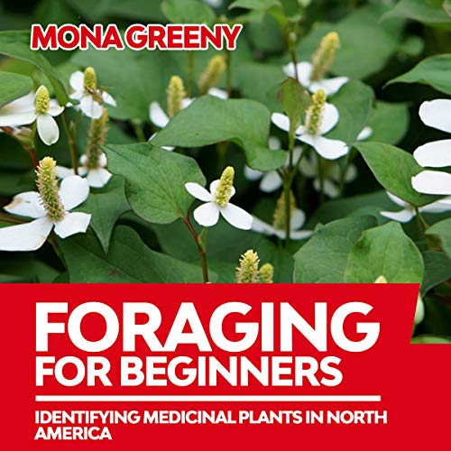 Foraging for Beginners cover art