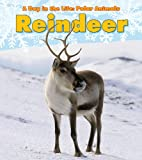 non-fiction reindeer books