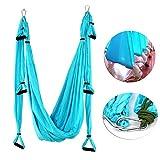 Yaegoo Aerial Yoga Swing Set - Yoga Hammock Swing -Flying Yoga Inversion Tool - Antigravity Ceiling Hanging Yoga Sling