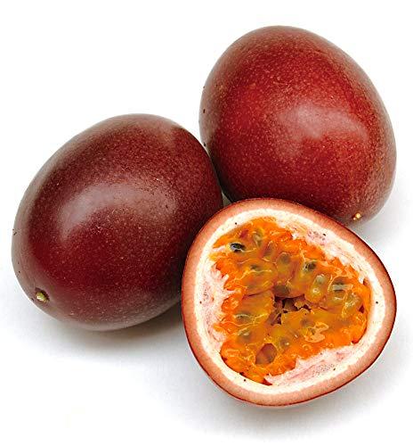 沖縄産 パッションフルーツ 大玉良品 約1�s(7玉?12玉) 初めての方用に大玉良品をお届け。葉酸・カロテンが豊富な女性にやさしいトロピカルフルーツ