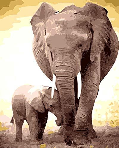 Suntown Pintura por números Pintura de Lona 40x50cm para Adultos y niños con Pinturas acrílicas y 3 Pinceles - Elefante Padre e Hijo ( Sin Marco )