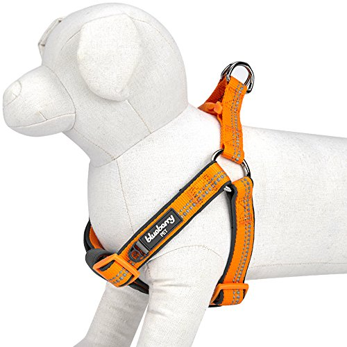 """Blueberry Pet 4 Colors Soft & Comfy New 3M Reflective Step-in Pastel Color Padded Dog Harness, Chest Girth 16.5"""" - 21.5"""", Pastel Orange, Small, Adjustable Harnesses for Dogs"""
