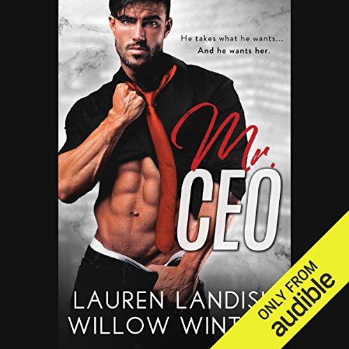 Mr. CEO audiobook cover art