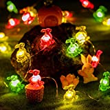 Easter Bunny Decorative String Lights, 40 Rabbits 8 Flash Modes Remote Control Fairy Lights with Timer, Rabbit Shaped Lights for Easter Holiday Indoor Outdoor Patio Birthday Seasonal Party Home Decor