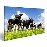 islandburner Bild Bilder auf Leinwand Holstein-Kühe auf
