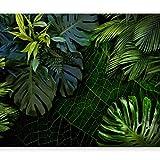 murando - Fototapete selbstklebend tropische Blätter Monstera 441x315 cm Tapete Wandtapete Wandbilder Klebefolie Dekofolie Tapetenfolie Wand Dekoration Wohnzimmer - Natur grün b-C-0224-a-a