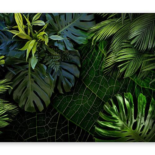 murando Fototapete tropische Blätter Monstera 350x256 cm Vlies Tapeten Wandtapete XXL Moderne Wanddeko Design Wand Dekoration Wohnzimmer Schlafzimmer Büro Flur Natur grün b-C-0224-a-a