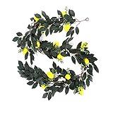 Redsa - Ghirlanda artificiale di limoni, foglie di eucalipto, 198 cm, con limoni, mirtilli e fiori, ghirlanda di frutta sintetica per feste di nozze, decorazione da parete in giardino