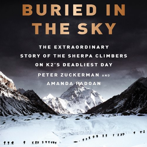 Buried in the Sky audiobook cover art