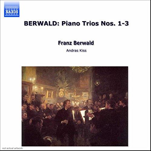 Piano Trio No. 3 in D Minor: III. Finale: Allegro molto - Un poco meno allegro