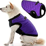 Gooby Fashion Dog Vest - Violet, Medium - Small Dog Sweater Bomber Dog Jacket Coat with D Ring Leash and Zipper Closure - Dog Clothes for Small Dogs Girl or Boy for Indoor and Outdoor Use