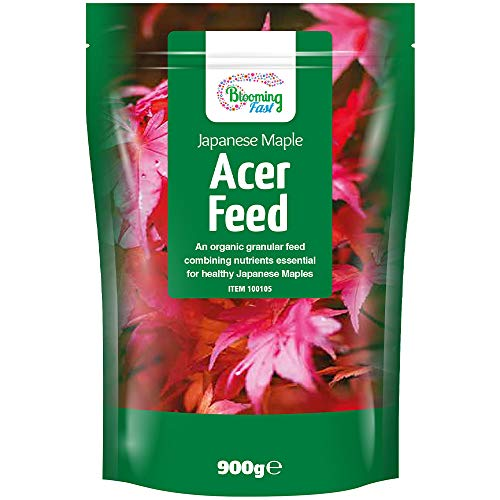 YouGarden Blooming Fast Japanese Maple Acer Feed 900g