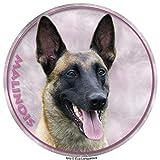 Lukka Malinois – Adhesivo de perro pastor belga 15 cm