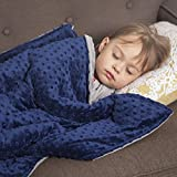 Roore 10 lb Weighted Blanket for Kids I 41x60 I Weighted Blanket with Plush Minky Removable Cover I Weighted with Premium Glass Beads I Perfect for Children from 80 to 125 lb (Blue, 10 lb 41'x60')…