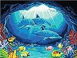 Pintura por números,Pez payaso delfín coralino Decoración del hogar del artista de la pintura al óleo de la lona preimpresa de bricolaje Inicio 40x50cm (Rainbow Pony).