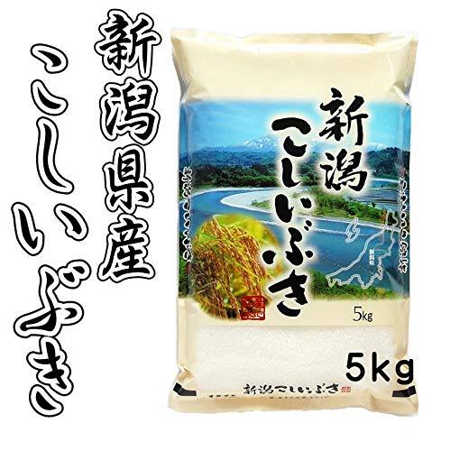 令和二年産 新潟県産 こしいぶき 精白米 5kg  (新潟米屋@井上米穀店)