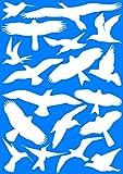 EAST-WEST Trading GmbH 18 weiße Vogelaufkleber für Fenster, Wintergärten, Glashäuser zum Vogelschutz, Warnvogel Vogel-Silhouetten, Schutz vor Vogelschlag, Fensterschutz