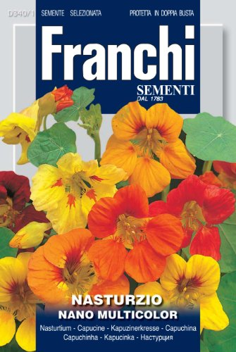Franchi Capucine