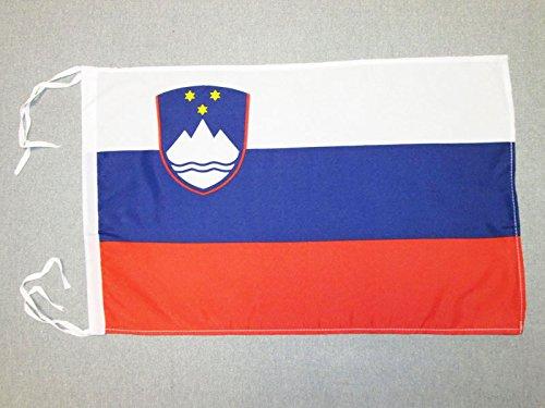 AZ FLAG Flagge SLOWENIEN 45x30cm mit Kordel - SLOWENISCHE Fahne 30 x 45 cm - flaggen Top Qualität