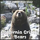 California Grizzly Bears Calendar 2021-2022: April 2021 Through December 2022 Square Photo Book Monthly Planner California Grizzly Bears, small calendar