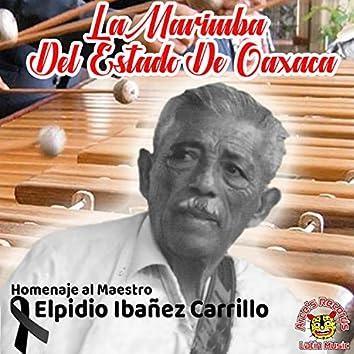 Homenaje Al Maestro Elpidio Ibañez Carrillo