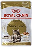 Royal Canin Chat Maine Coon Adulte Nourriture, 12 X 85 g